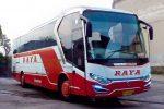 PO Raya